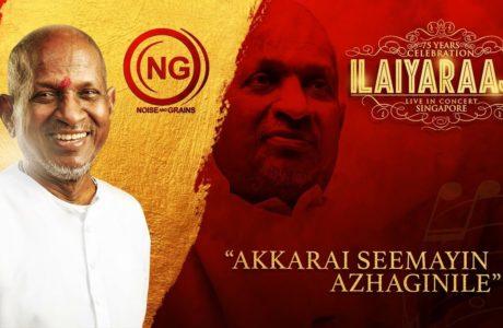 Akkarai Seemayin Azhaginile Ilaiyaraaja song